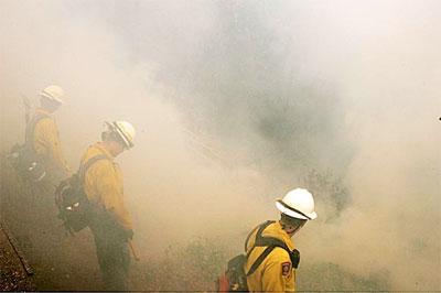 Содержание золота в дыму